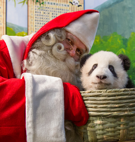 Santa Claus's Tour in China